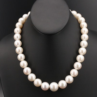 13.00 MM - 17.00 MM South Sea Pearl Necklace