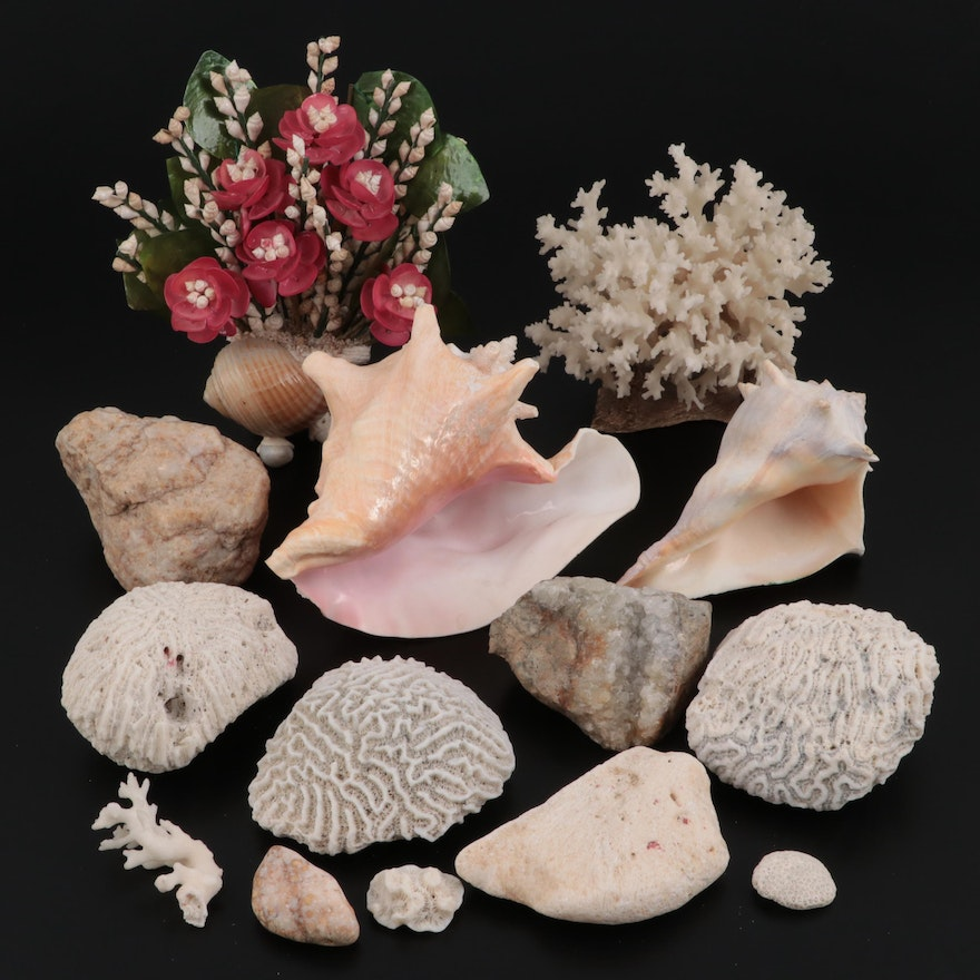 Queen Conch, Knobbed Whelk and Coral Decor with Tumbled Stones