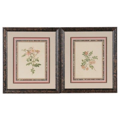 Hand-Colored Botanical Engravings