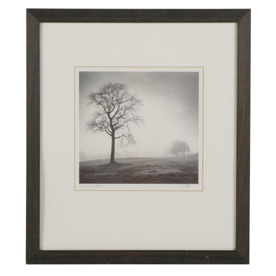 """Offset Lithograph After Richard Calvo """"In Just Spring,"""" 21st Century"""
