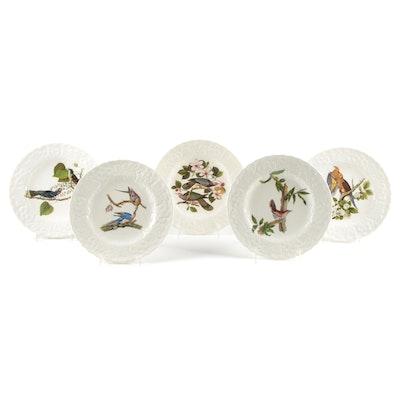 "Alreaf Meakin ""Birds of America"" National Audubon Society Plates"