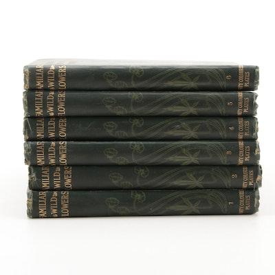 "Illustrated ""Familiar Wild Flowers"" Six-Volume Set by F. Edward Hulme"