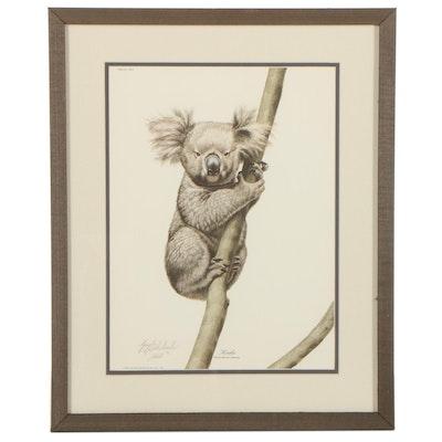 "Guy Coheleach Offset Lithograph ""Koala,"" 1972"
