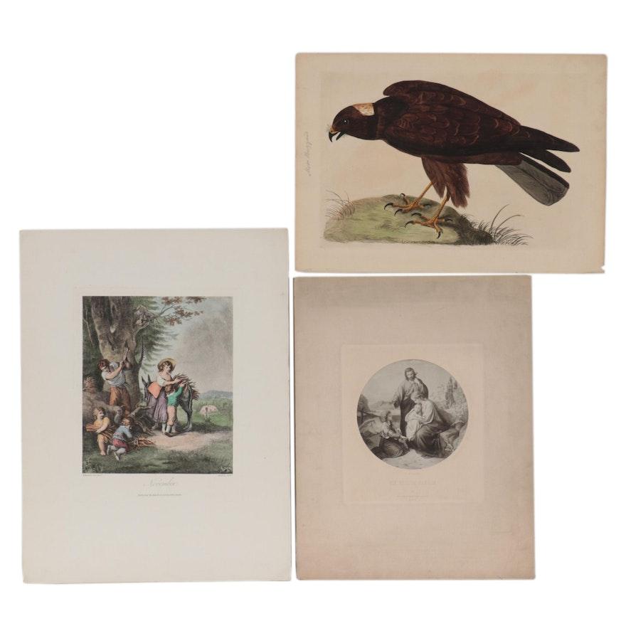 Intaglio Prints and Photogravures
