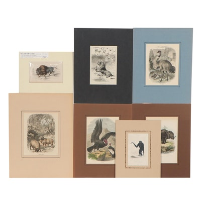 Hand-Colored Animal Engravings including William Home Lizars