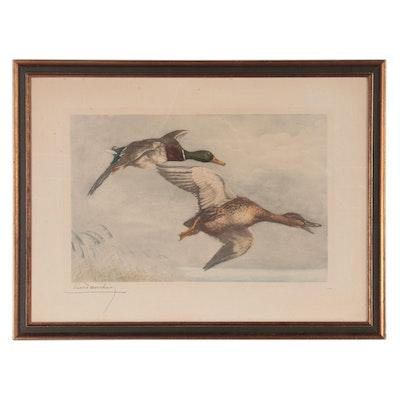 Leon Danchin Hand-Colored Etching of Mallard Ducks, Early 20th Century