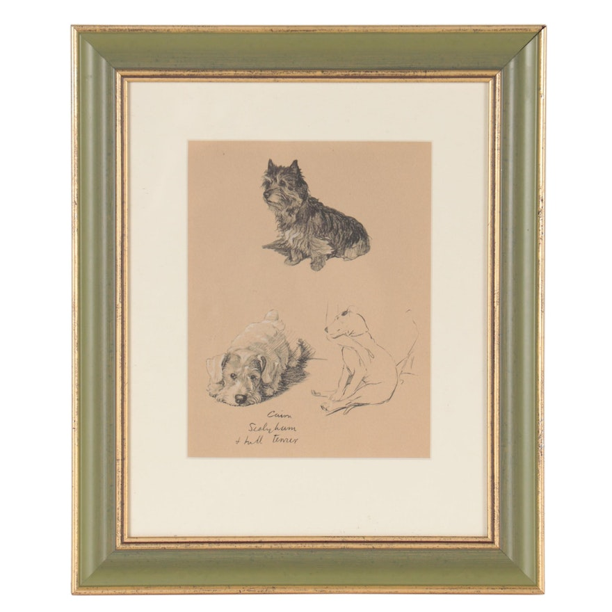 Lithograph of Cairn Terrier, Sealyham Terrier, and Bull Terrier