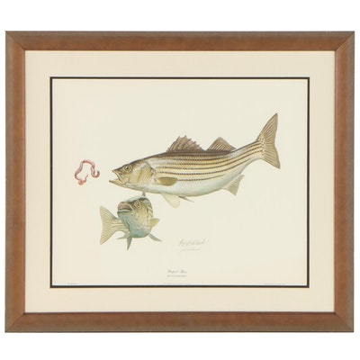 """Guy Coheleach Offset Lithograph """"Striped Bass,"""" 1968"""