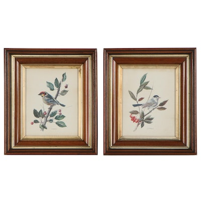 Offset Lithographs After Anatole Marlin of Bird Illustrations, Late 20th Century