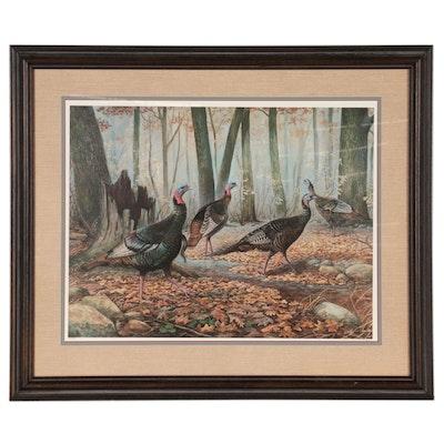 Jim Foote Wildlife Offset Lithograph of Wild Turkeys