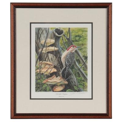 "John A. Ruthven Offset Lithograph ""Red-Bellied Woodpecker"""