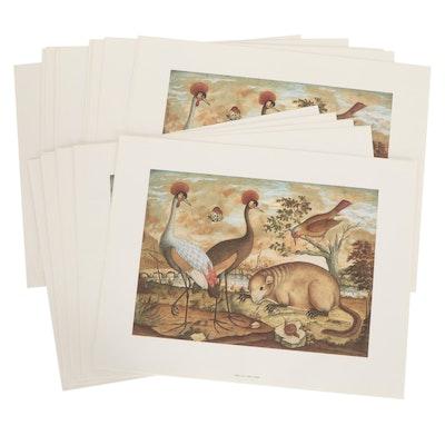 Offset Lithographs of Wildlife, Circa 1991