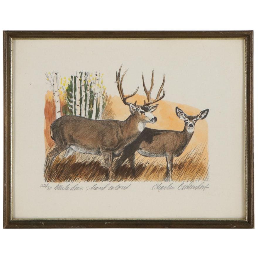 """Charles Beckendorf Hand-Colored Halftone """"Mule Deer"""""""