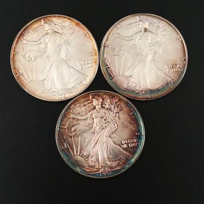 Toned 1991 American Silver Eagle Bullion Coins