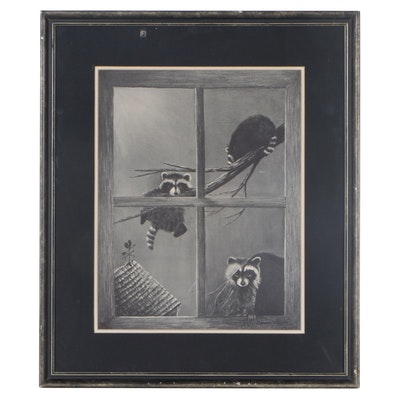June Bauer Towns Offset Lithograph of Raccoons, Late 20th Century
