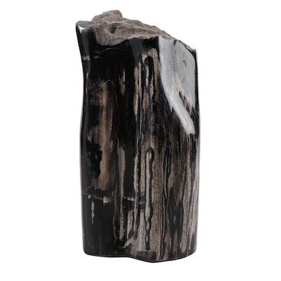 Polished Petrified Wood Specimen