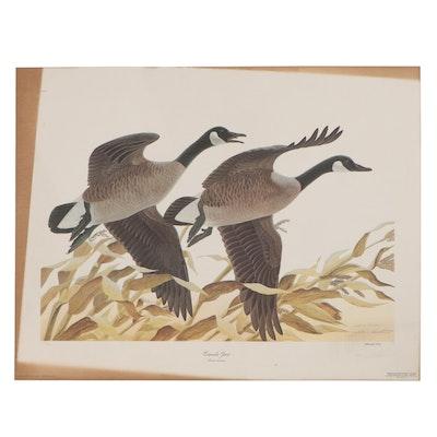 """John Ruthven Offset Lithograph """"Canada Geese,"""" 1975"""