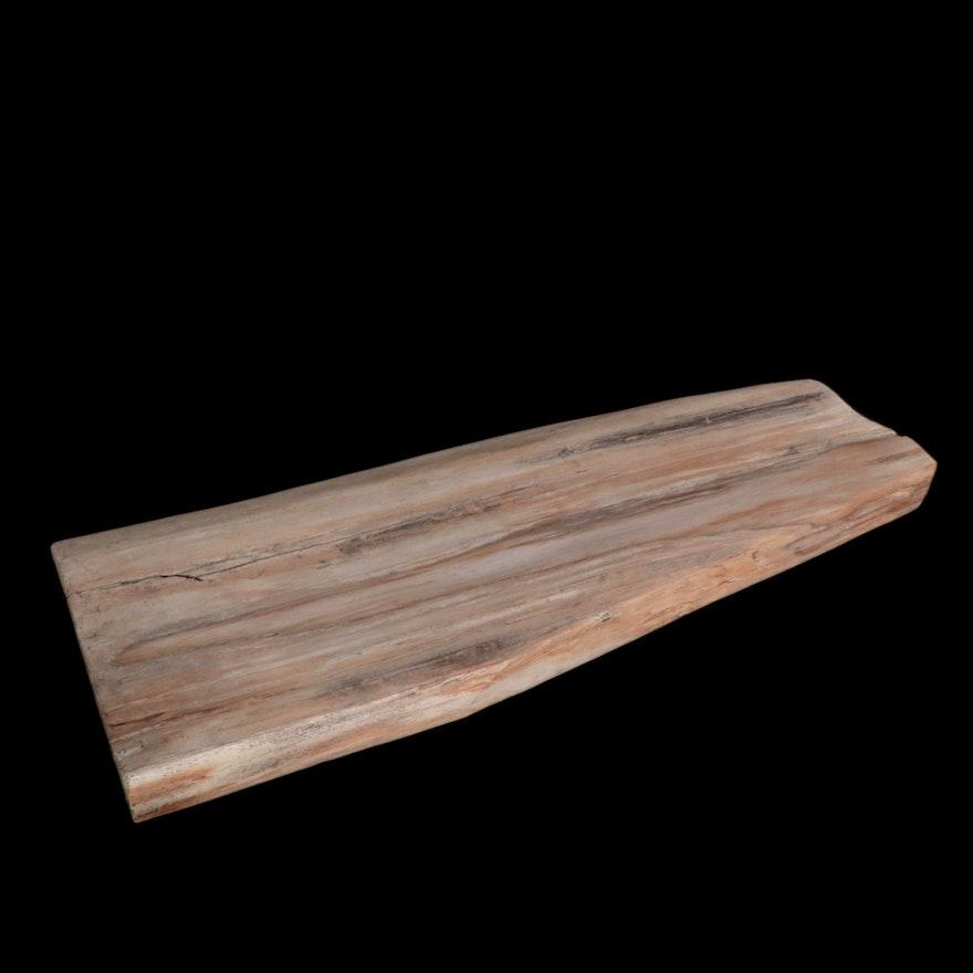 Large Polished Petrified Wood Slab