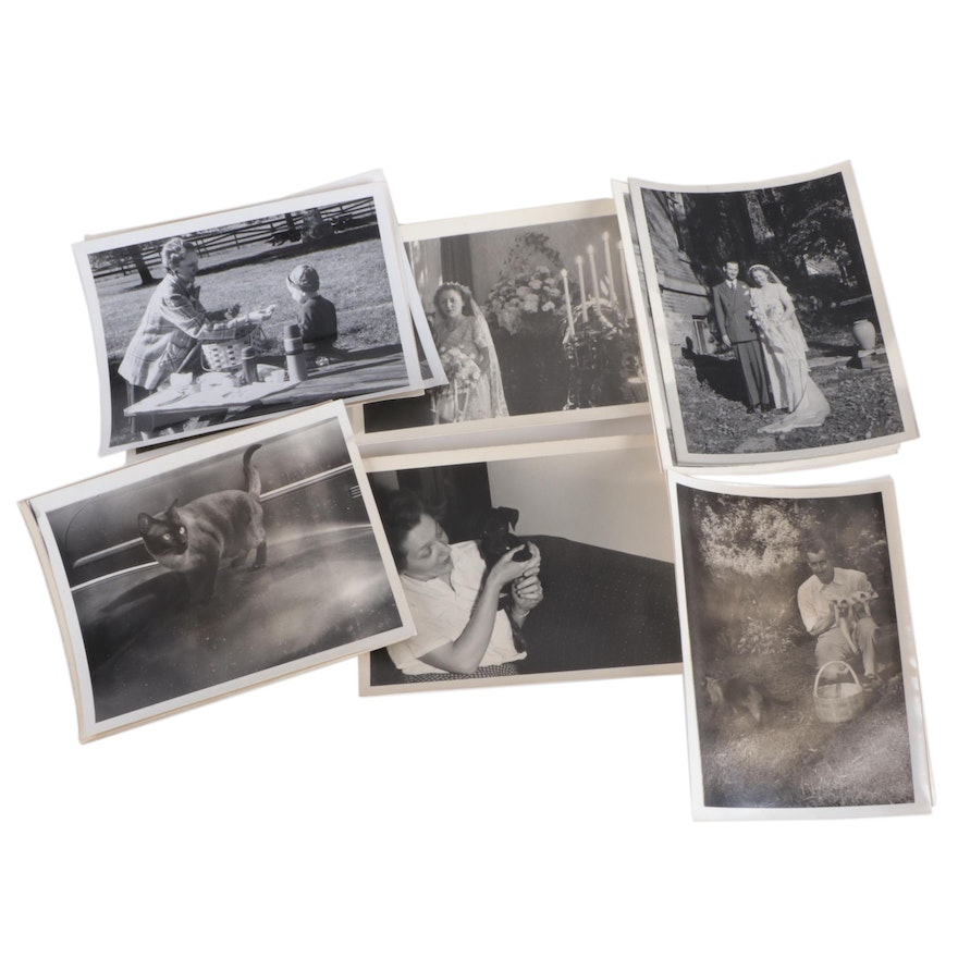 Silver Gelatin Prints Including Wedding and Pets, Mid-20th Century