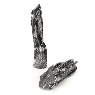 Polished Orthoceras Fossil Tower and Slab