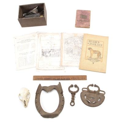 Veterinary Medicine Books, Tools, Small Mammal Skull, and More