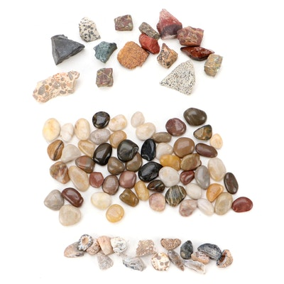 Tumbled Quartz and Jasper with Raw Puddingstone and Other Mineral Specimens