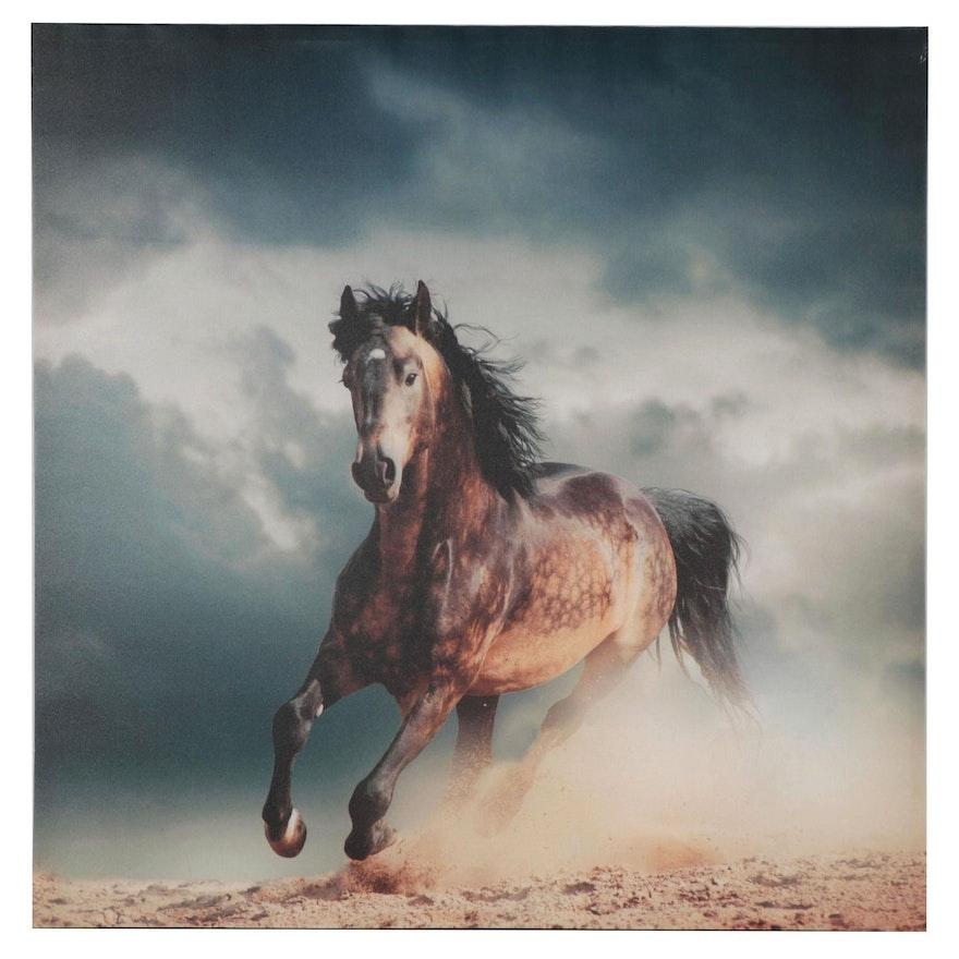 Giclée of Reverse Dapple Horse, 21st Century