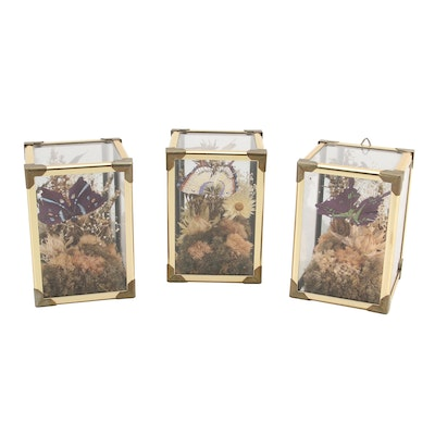 Hand-Painted Feather Faux Butterfly Hanging Display Boxes