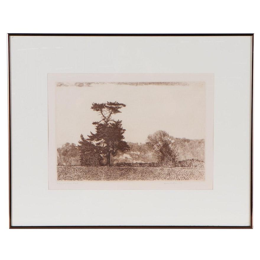 "Herbert Lewis Fink Etching ""Lonesome Pines,"" 1978"