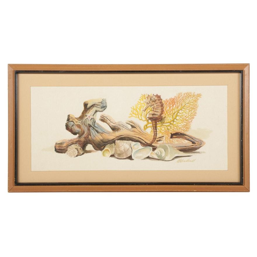 Dorothea S. Wendlandt Watercolor and Gouache Painting of Aquatic Diorama