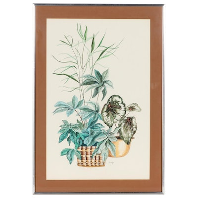 Watercolor Painting of House Plants, 1976