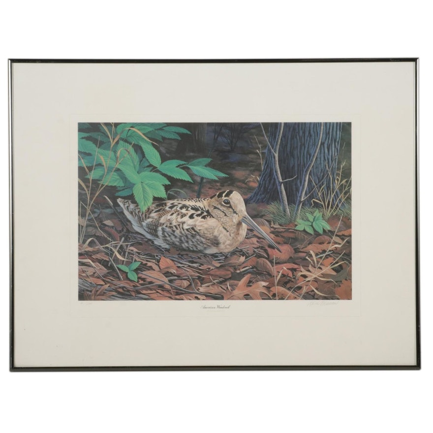 """Keith Freeman Offset Lithograph """"American Woodcock,"""" Late 20th Century"""