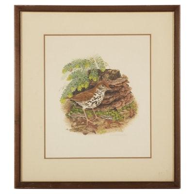 "Don Whitlatch Offset Lithograph ""Wood Thrush,"" Circa 1973"