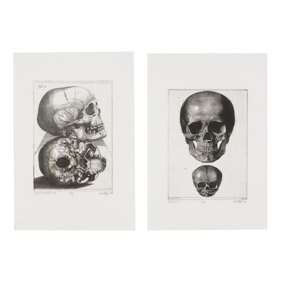 """Andy Hudson Etchings """"Craniofacial"""" and """"Skulls,"""" Late 20th Century"""