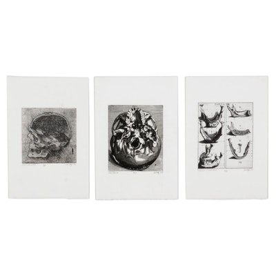 Andy Hudson Anatomical Skull Etchings, Late 20th-21st Century