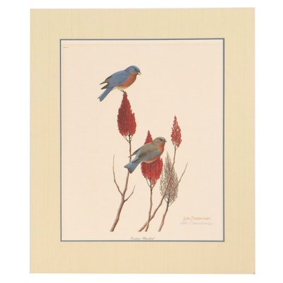 """William Harold Zimmerman Offset Lithograph """"Eastern Bluebird,"""" Late 20th Century"""