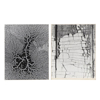 Grant Haist Abstract Silver Print Photographs