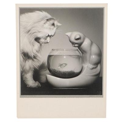 "Grant Haist Silver Print Photograph ""Fishful Thinking"""