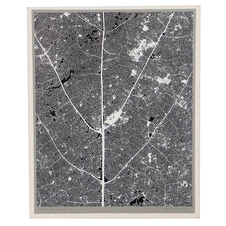 "Grant Haist Silver Print Photograph ""Leaf Network"""