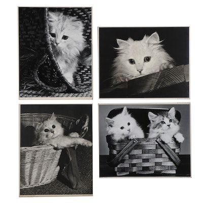 """Grant M. Haist Silver Print Photographs """"Kitten's Caper"""" and More"""