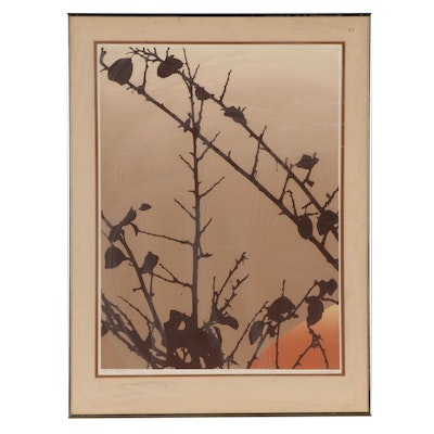 """Jim Boutwell Serigraph """"Autumn Branches I"""""""
