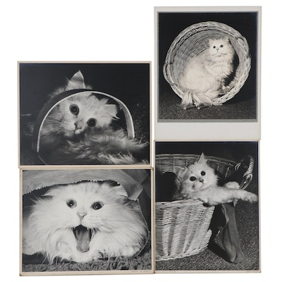"""Grant Haist Silver Print Photographs """"Back Talk"""" and More"""