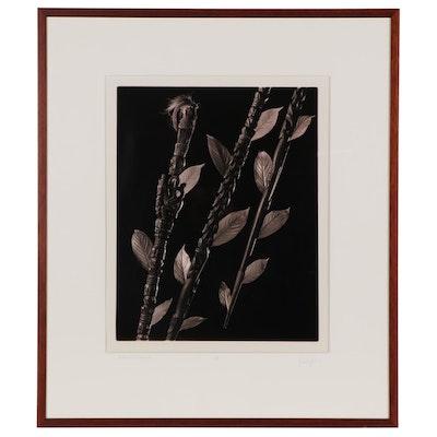 "Corson Hirschfeld Silver Gelatin Photograph ""Batak Staff, Indonesia"""