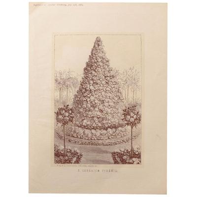 """Lithograph """"A Geranium Pyramid"""""""