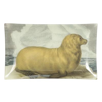 John Derian Company Decoupage Glass Plate of Seal, Late 20th Century