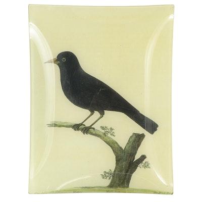 "John Derian Company ""Black Bird"" Rectangular Decoupage Glass Tray"