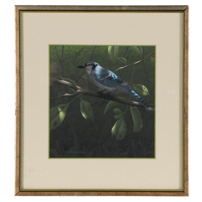 Robert Brandenburg Gouache Painting of Blue Jay, 1983
