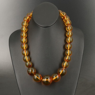 Graduated Ambroid Necklace