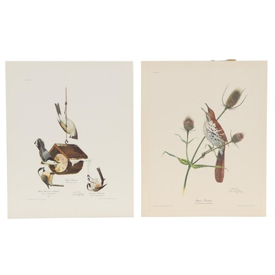 """Ray Harm Offset Lithographs """"Brown Thrasher"""" and More"""