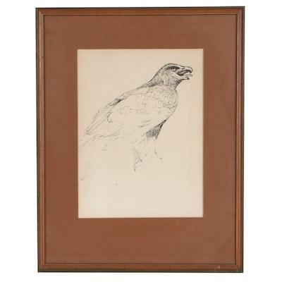 Robert James Foose Ink Drawing of Falcon, 1967